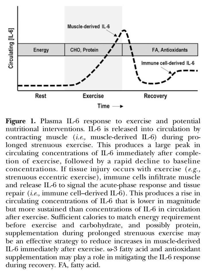 Stress hormone IL-6 and chronic malnutrition